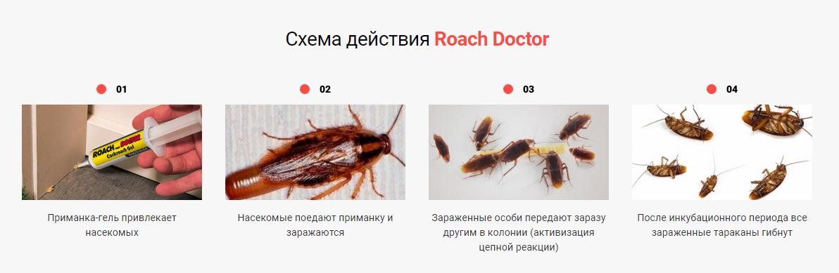 Roach Doctor отзывы специалистов