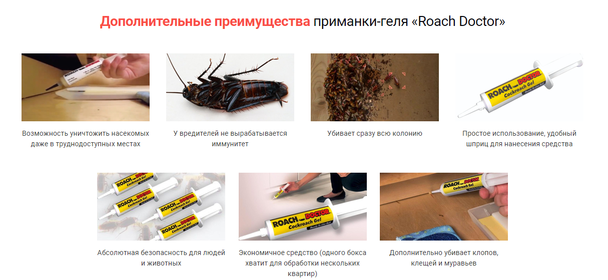 Roach Doctor отзывы специалистов 2