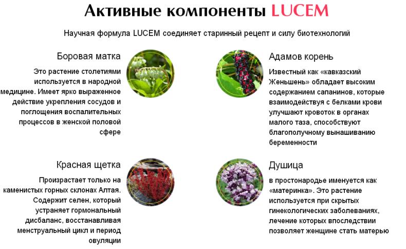 Lucem отзывы специалистов
