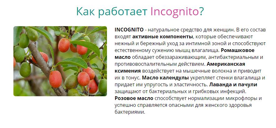 Incognito отзывы специалистов 1