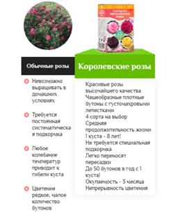 гибридные королевские розы отзывы специалистов