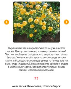 Реальные отзывы о гибридных королевских розах2