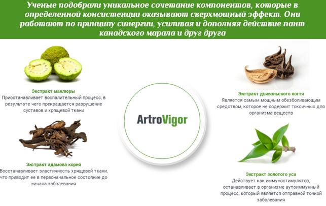 Отзывы специалистов об ArtroVigor3