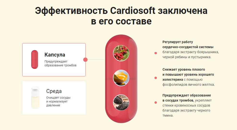 Cardiosoft отзывы специалистов
