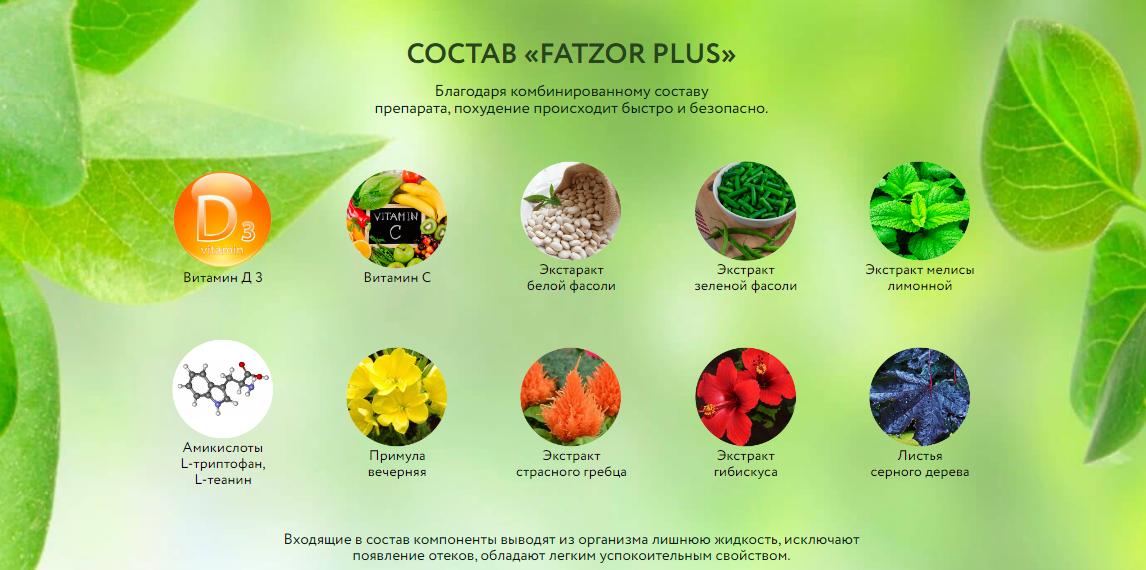Fatzor Plus отзывы специалистов 1